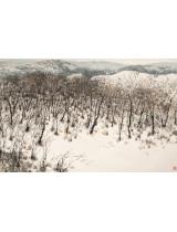 《雪霽》210×142.5cm 1999年